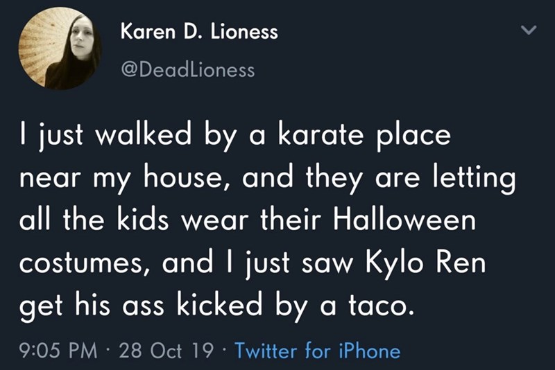 Text - Karen D. Lioness @DeadLioness I just walked by a karate place my house, and they are letting near all the kids wear their Hallloween costumes, and I just saw Kylo Ren get his ass kicked by a taco. 9:05 PM 28 Oct 19 Twitter for iPhone