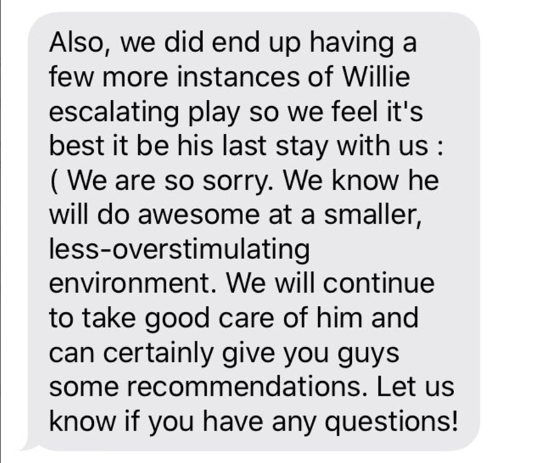 Text - Also, we did end up having a few more instances of Willie escalating play so we feel it's best it be his last stay with us: (We are so sorry. We know he will do awesome at a smaller, less-overstimulating environment. We will continue to take good care of him and can certainly give you guys some recommendations. Let us know if you have any questions!