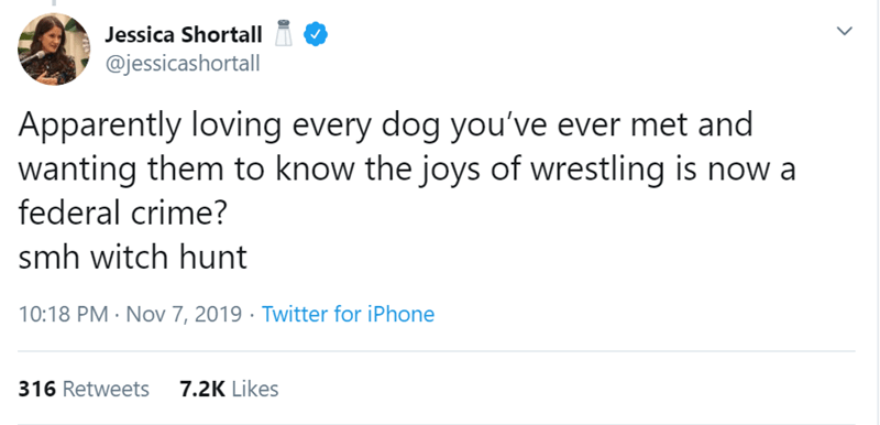 Text - Jessica Shortall @jessicashortall Apparently loving every dog you've ever met and wanting them to know the joys of wrestling is now a federal crime? smh witch hunt 10:18 PM Nov 7, 2019 Twitter for iPhone 7.2K Likes 316 Retweets