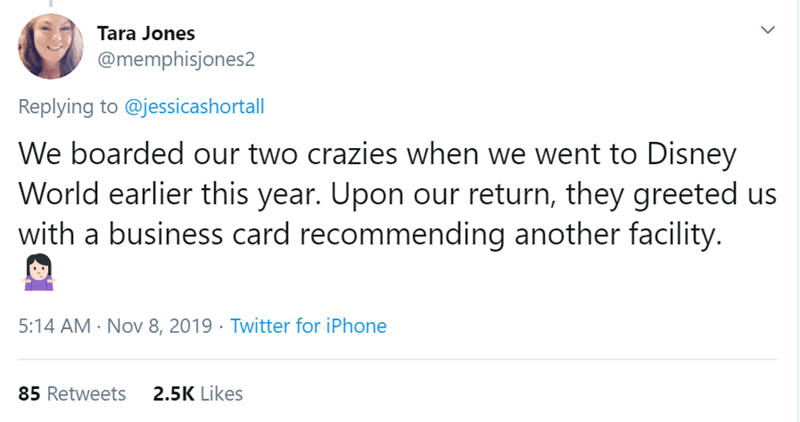 Text - Tara Jones @memphisjones2 Replying to @jessicashortall We boarded our two crazies when we went to Disney World earlier this year. Upon our return, they greeted us with a business card recommending another facility. 5:14 AM Nov 8, 2019 Twitter for iPhone 2.5K Likes 85 Retweets