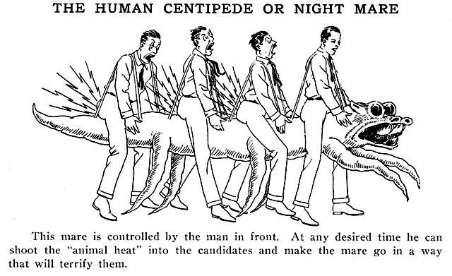 """People - THE HUMAN CENTIPEDE OR NIGHT MARE AAA This mare is controlled by the man in front. At any desired time he can shoot the """"animal heat"""" into the candidates and make the mare go in a way that wil terrify them"""