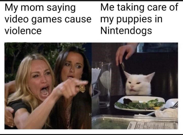 Photo caption - Me taking care of My mom saying video games cause my puppies in violence Nintendogs