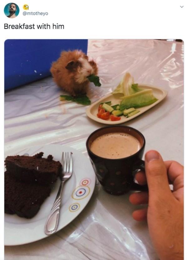 Food - @mtotheyo Breakfast with him