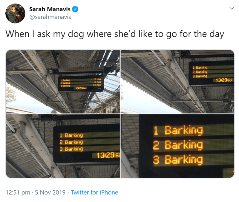 Product - Sarah Manavis @sarahmanavis When I ask my dog where she'd like to go for the day 1 Barking 2 Barking 3 Barking 13-29.50 3 rins 1 Barking 8 nin 13 ins 2 Barking 3 Barking 132950 1 Barking 2 Barking 3 Barking 1 Barking 2 Barking 3 Barking 13-29.:5 12:51 pm 5 Nov 2019 Twitter for iPhone