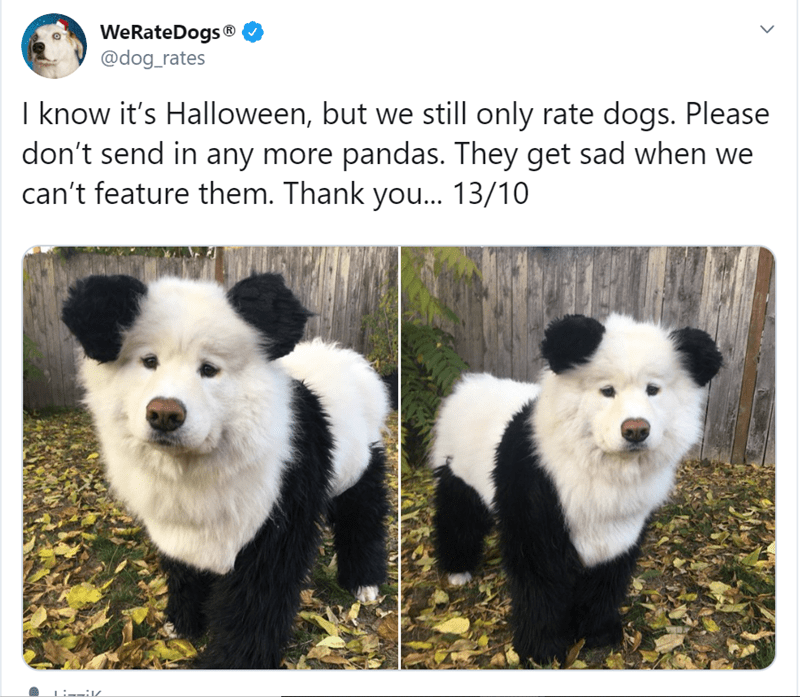 Mammal - WeRateDogs @dog_rates I know it's Halloween, but we still only rate dogs. Please don't send in any more pandas. They get sad when we can't feature them. Thank you... 13/10