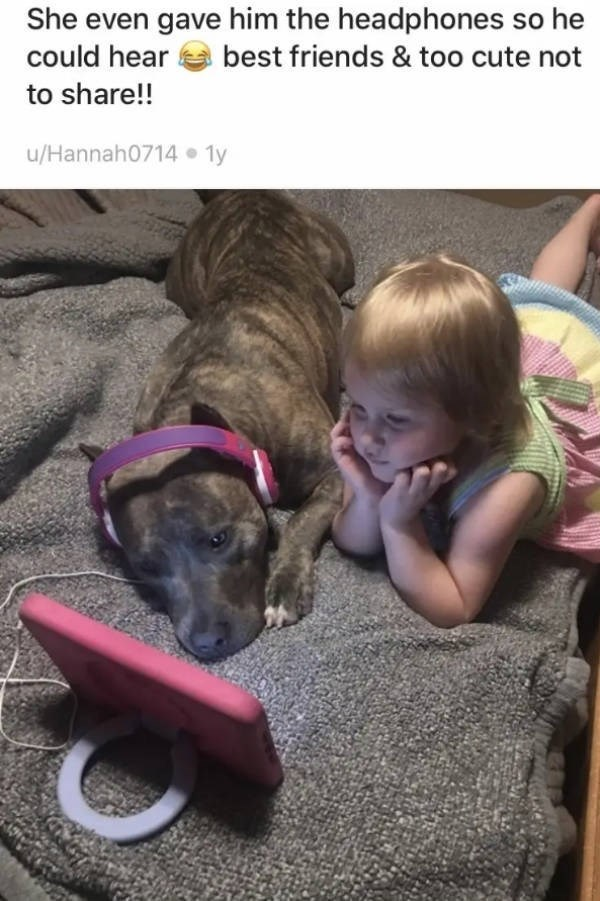 Dog breed - She even gave him the headphones so he best friends & too cute not could hear to share!! u/Hannah0714 1y
