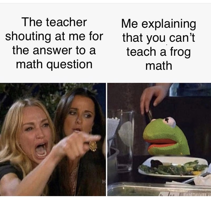 Text - The teacher Me explaining that you can't teach a frog shouting at me for the answer to a math question math