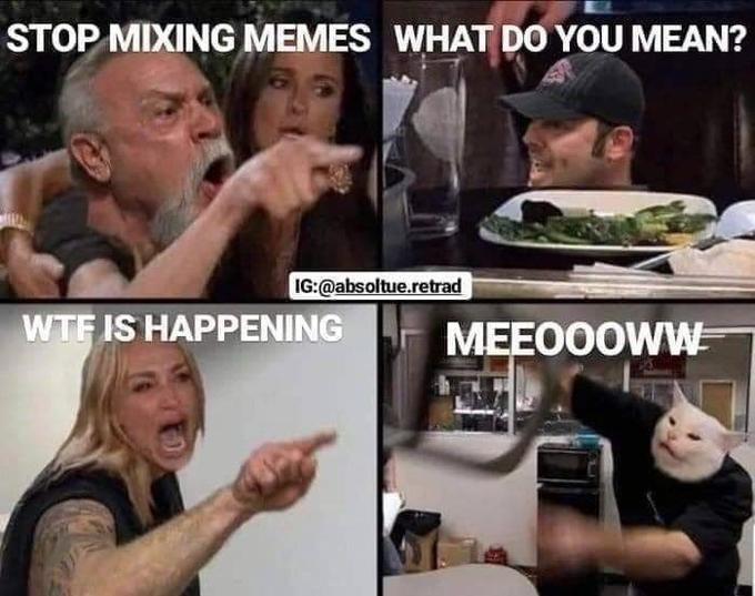 Internet meme - STOP MIXING MEMES WHAT DO YOU MEAN? IG:@absoltue.retrad WTFIS HAPPENING MEEO0OWW