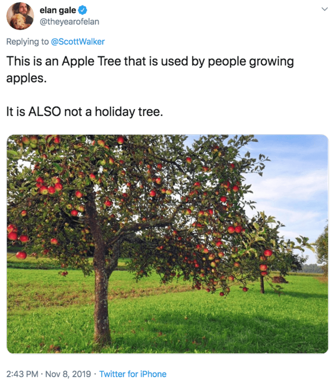 Tree - elan gale @theyearofelan Replying to @ScottWalker This is an Apple Tree that is used by people growing apples It is ALSO not a holiday tree. 2:43 PM Nov 8, 2019 Twitter for iPhone