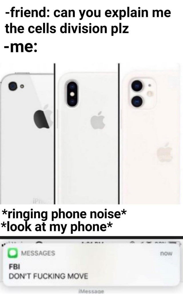 Text - -friend: can you explain me the cells division plz -me: *ringing phone noise* look at my phone* MESSAGES now FBI DON'T FUCKING MOVE IMessage