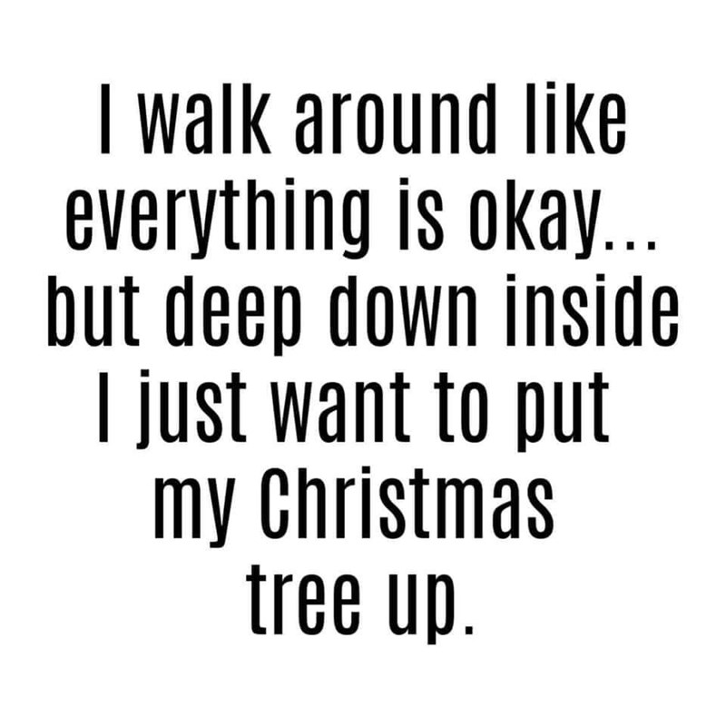 Text - I walk around like W everything is okay.. but deep down inside I just want to put ietmas my Christmas tree up.