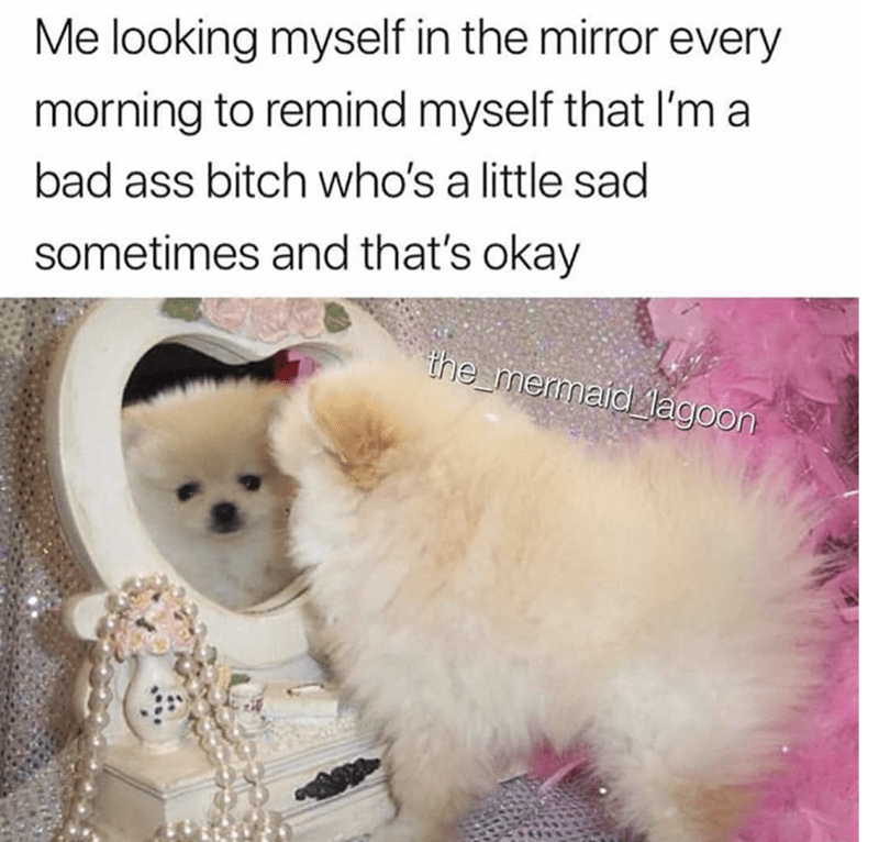 Mammal - Me looking myself in the mirror every morning to remind myself that I'm a bad ass bitch who's a little sad sometimes and that's okay the mermaid lagoon