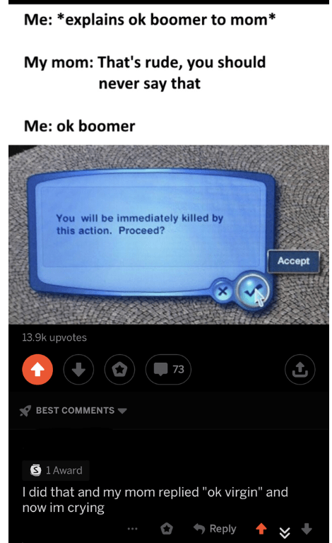 """Text - Me: *explains ok boomer to mom* My mom: That's rude, you should never say that Me: ok boomer You will be immediately killed by this action. Proceed? Аcсept X 13.9k upvotes 73 BEST COMMENTS S 1 Award I did that and my mom replied """"ok virgin"""" and now im crying Reply"""