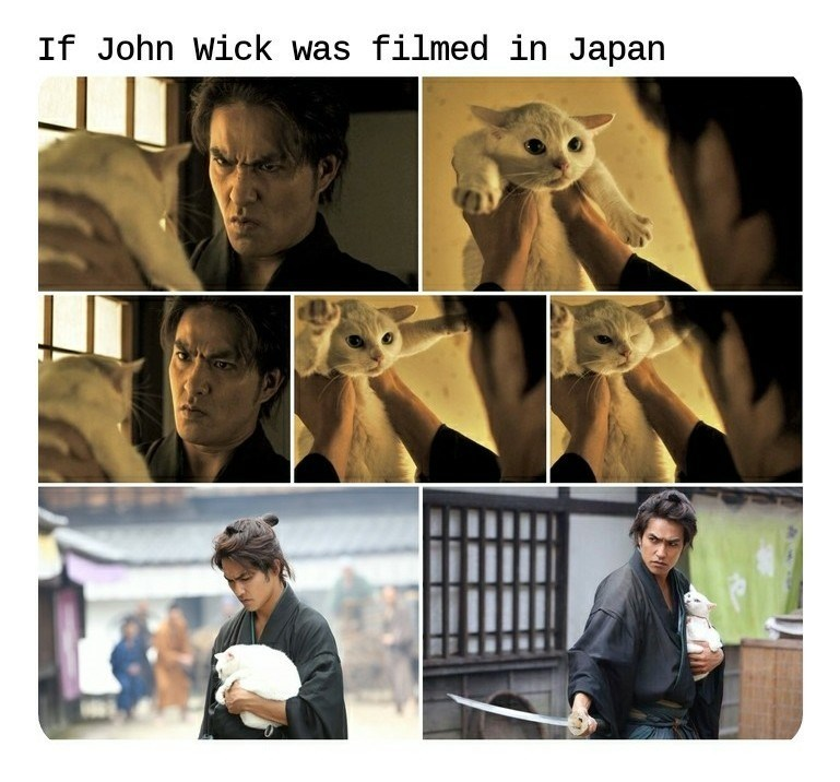 john wick Japan Cats funny - 9387448064