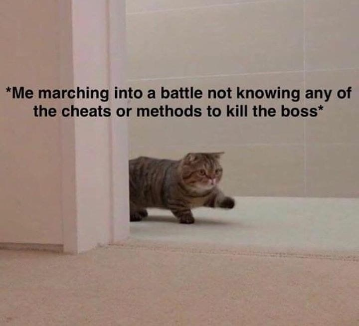 Cat - *Me marching into a battle not knowing any of the cheats or methods to kill the boss*