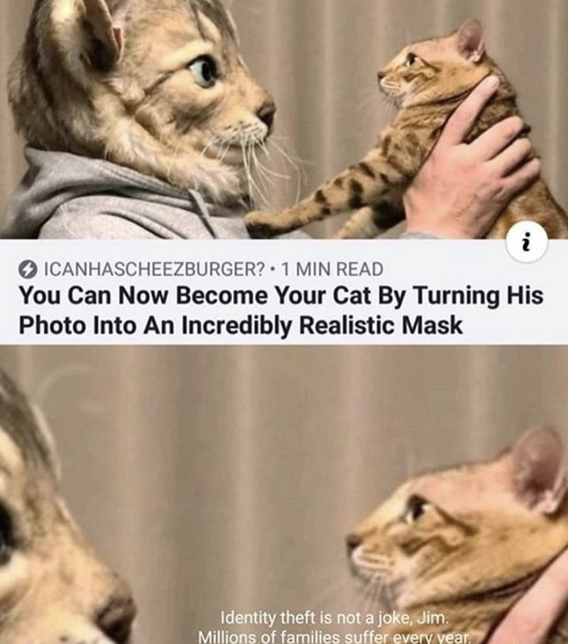 Mammal - ICANHASCHEEZBURGER? 1 MIN READ You Can Now Become Your Cat By Turning His Photo Into An Incredibly Realistic Mask Identity theft is not a joke, Jim. Millions of families suffer every year.