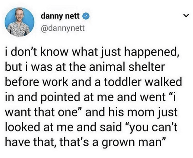 "Text - danny nett @dannynett i don't know what just happened, but i was at the animal shelter before work and a toddler walked in and pointed at me and went ""i want that one"" and his mom just looked at me and said ""you can't have that, that's a grown man"""