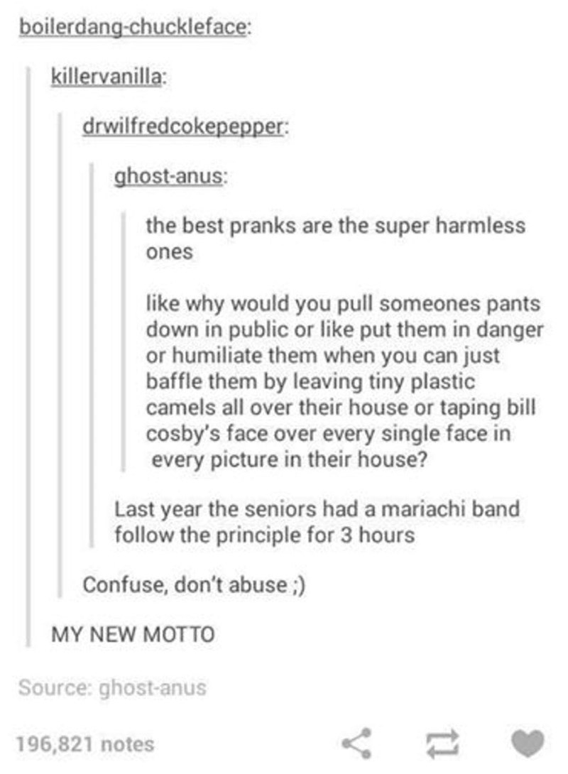 Text - boilerdang-chuckleface: killervanilla: drwilfredcokepepper: ghost-anus: the best pranks are the super harmless ones like why would you pull someones pants down in public or like put them in danger or humiliate them when you can just baffle them by leaving tiny plastic camels all over their house or taping bill cosby's face over every single face in every picture in their house? Last year the seniors had a mariachi band follow the principle for 3 hours Confuse, don't abuse: MY NEW MOTTO So