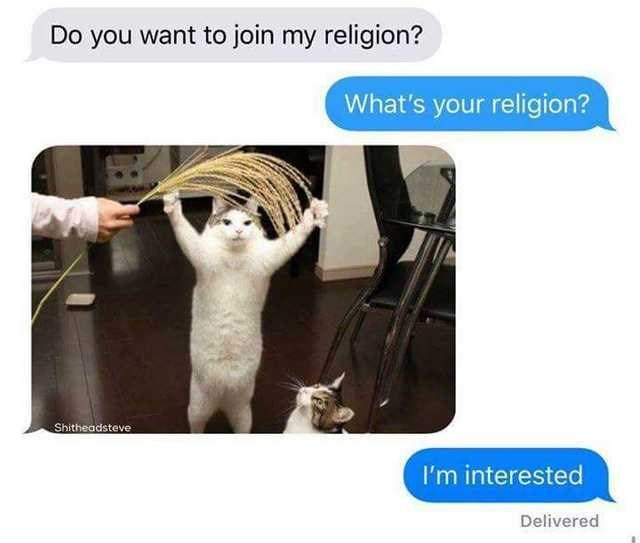 Joint - Do you want to join my religion? What's your religion? Shitheadsteve I'm interested Delivered