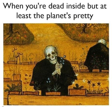 Adaptation - When you're dead inside but at least the planet's pretty