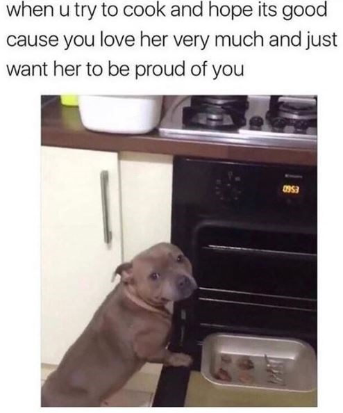 Canidae - when u try to cook and hope its good cause you love her very much and just want her to be proud of you