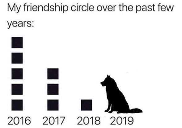 Text - My friendship circle over the past few years: . 2016 2017 2018 2019