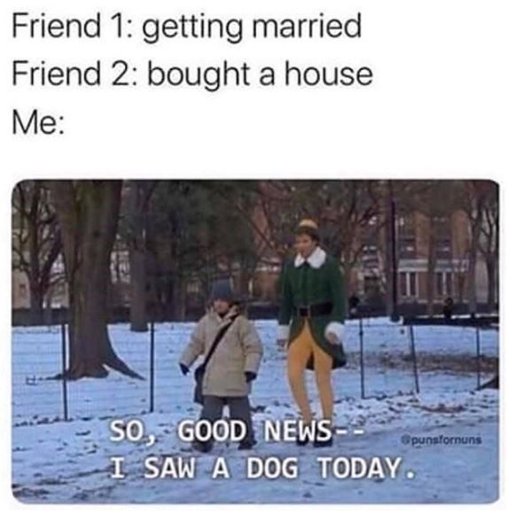 Adaptation - Friend 1: getting married Friend 2: bought a house Ме: SO, GOOD NEWS SAW A DOG TODAY Opunsfornuns
