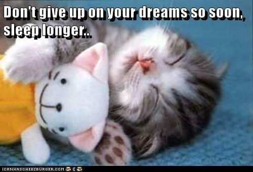 Cat - Don't give up on your dreams so soon, sleep longer.. ICANHASCHEE2BURGER CcOM