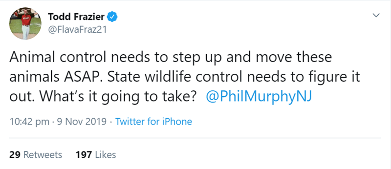 Text - Todd Frazier @FlavaFraz21 Animal control needs to step up and move these animals ASAP. State wildlife control needs to figure it out. What's it going to take? @PhilMurphyNJ Twitter for iPhone 9 Nov 2019 10:42 pm 197 Likes 29 Retweets
