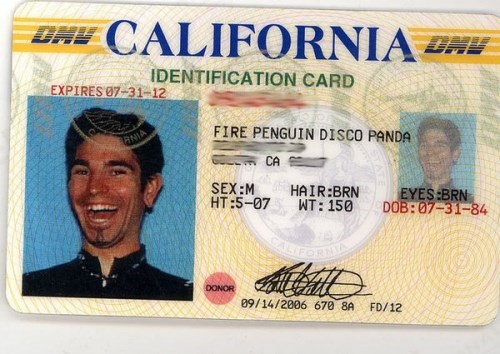 Forehead - BAV CALIFORNIA IDENTIFICATION CARD EXPIRES 07-31-12 FIRE PENGUIN DISCO PANDA ANIA CA SEX:M HT:5-07 HAIR:BRN WT: 150 EYES:BRN DOB: 07-31-84 DONOR 09/14/2006 670 8A FD/12