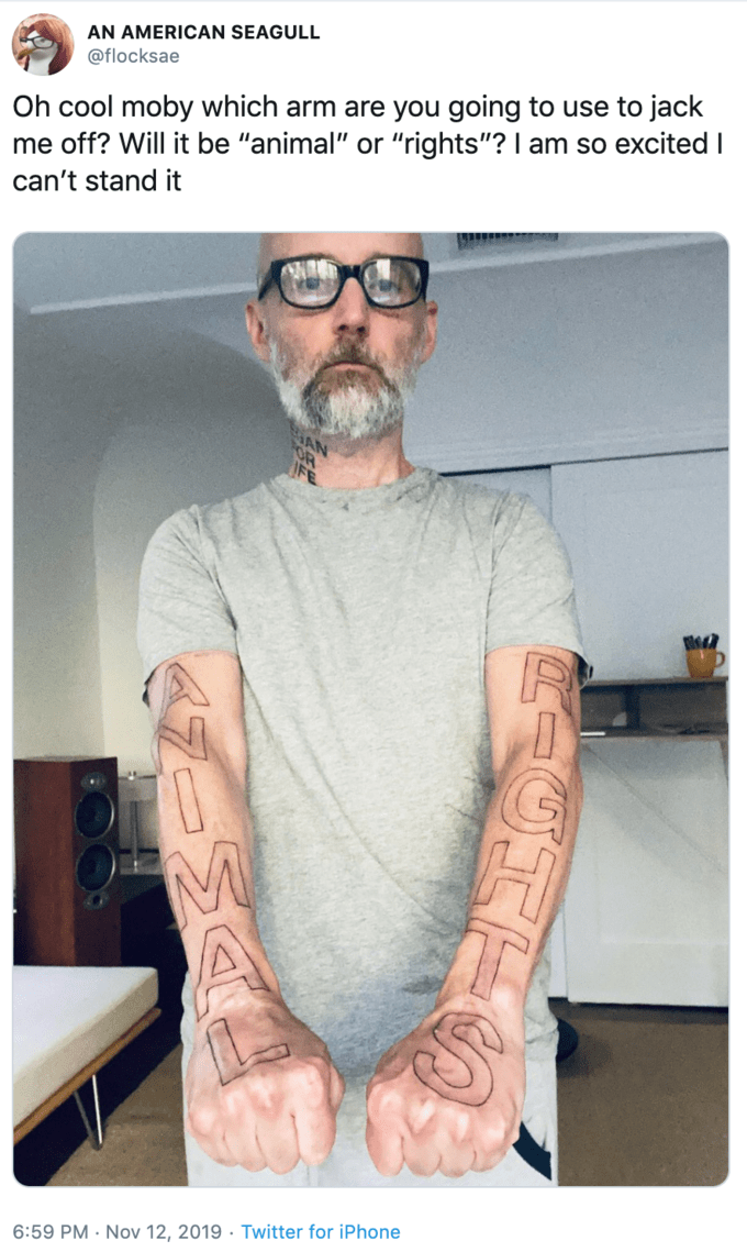 "Tattoo - AN AMERICAN SEAGULL @flocksae Oh cool moby which arm are you going to use to jack me off? Will it be ""animal"" or ""rights""? I am so excited I can't stand it 6:59 PM Nov 12, 2019 Twitter for iPhone CAGHT"