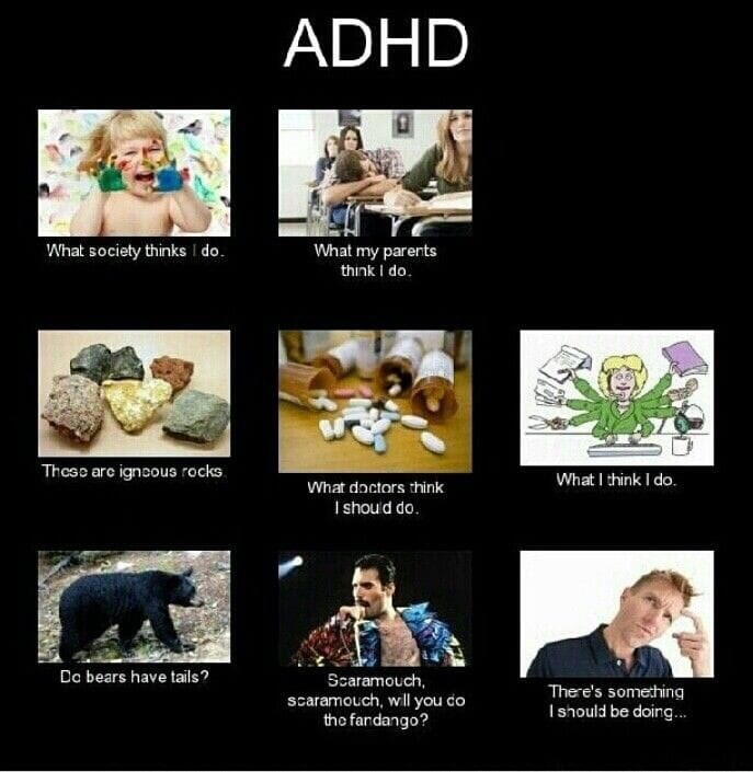 Photography - ADHD What society thinks I do. What my parents think I do Theso are ignoous rocks What I think I do. What doctors think I shou d do Dc bears have tails? Scaramouch, scaramouch, wll you do the fandango? There's something Ishould be doing...