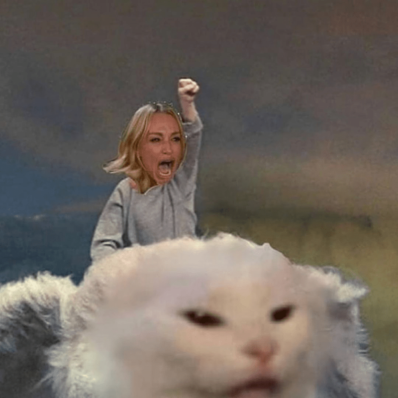 Funny woman yelling at cat meme neverending story
