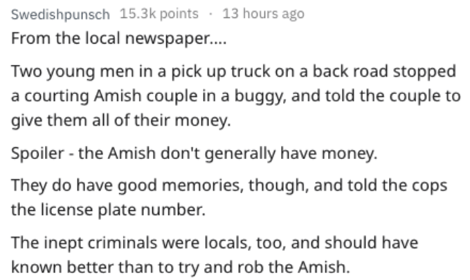 Text - Swedishpunsch 15.3k points 13 hours ago From the local newspape... Two young men ina pick up truck on a back road stopped a courting Amish couple in a buggy, and told the couple to give them all of their money. Spoiler - the Amish don't generally have money. They do have good memories, though, and told the cops the license plate number. The inept criminals were locals, too, and should have known better than to try and rob the Amish