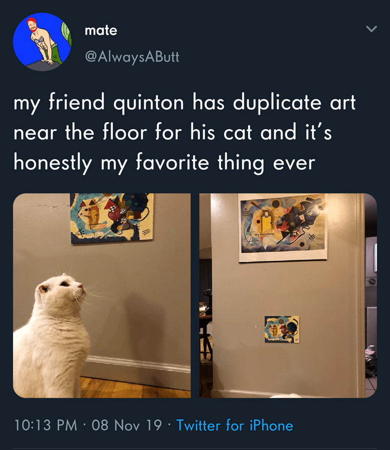 Text - mate @AlwaysAButt friend quinton has duplicate art my near the floor for his cat and it's honestly my favorite thing ever 10:13 PM 08 Nov 19 Twitter for iPhone