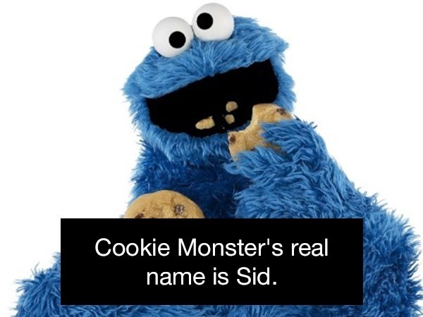 Stuffed toy - Cookie Monster's real name is Sid.