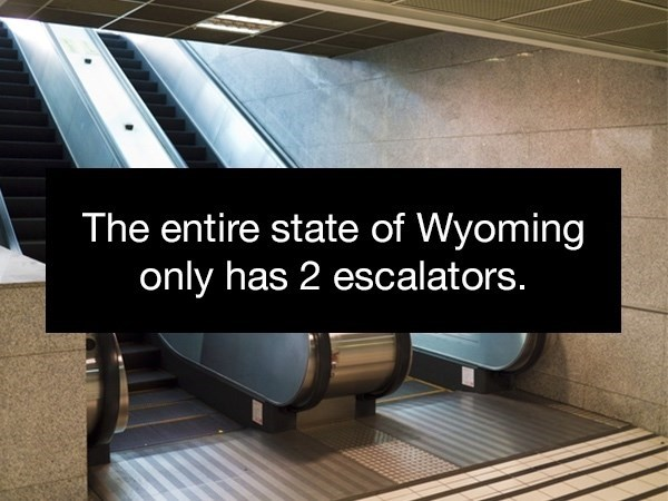 Floor - The entire state of Wyoming only has 2 escalators.