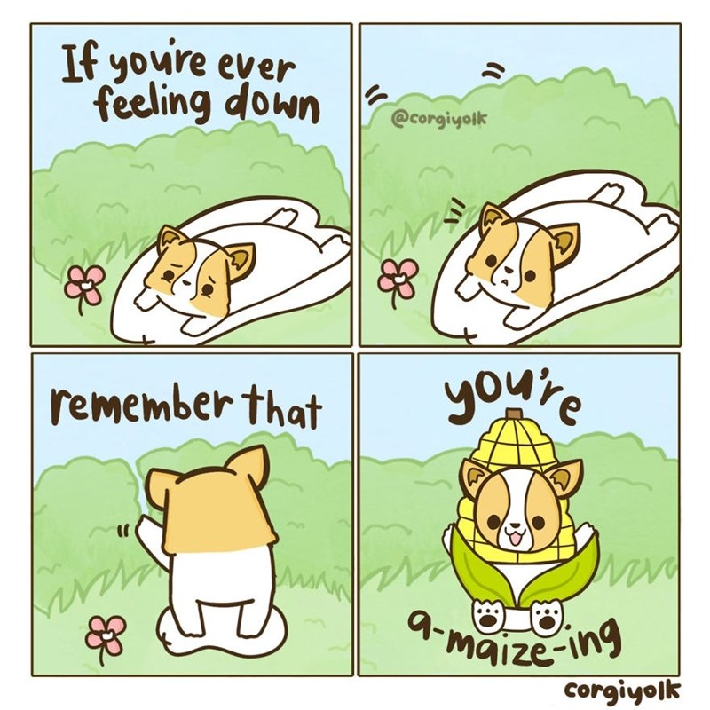 Cartoon - If youre ever feeling down @corgiyolk youre remember that 4-maize-ing corgiyolk