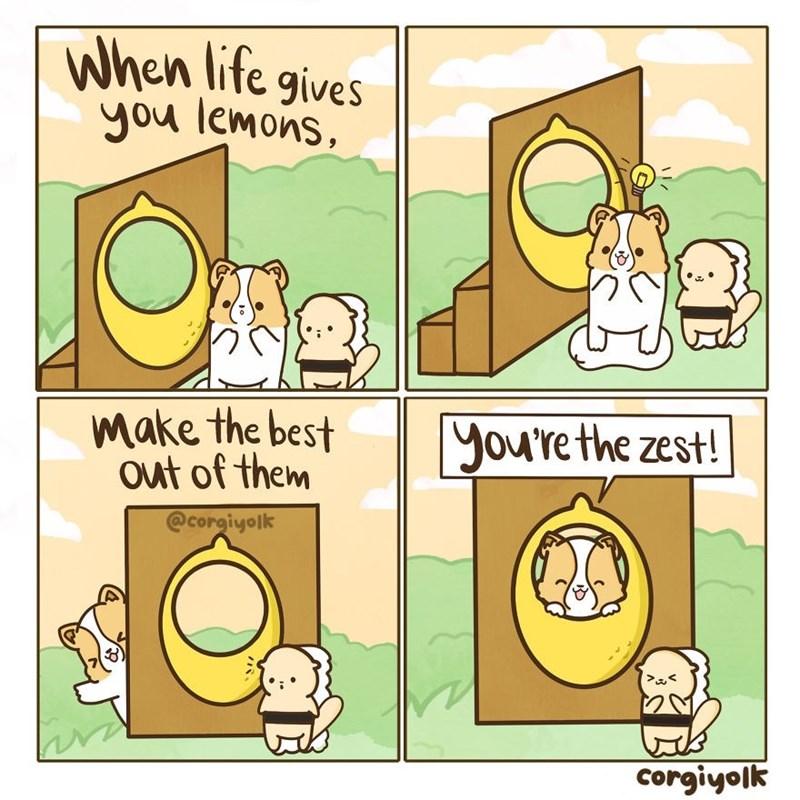 Cartoon - When life gives you lemons, make the best out of them yourethe zest! @corgiyolk Corgiyolk