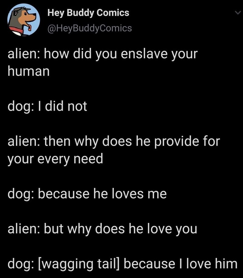 Text - Hey Buddy Comics @HeyBuddyComics alien: how did you enslave your human dog: I did not alien: then why does he provide for your every need dog: because he loves me alien: but why does he love you dog: [wagging tail] because I love him