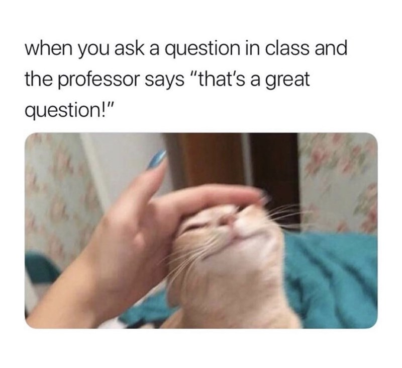 "Skin - when you ask a question in class and the professor says ""that's a great question!"""