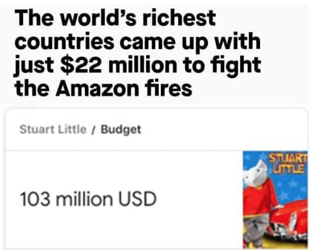 Text - The world's richest countries came up with just $22 million to fight the Amazon fires Stuart Little/Budget STUART LTTLE 103 million USD