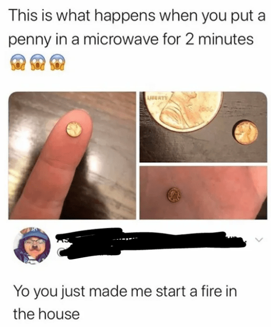Skin - This is what happens when you put a penny in a microwave for 2 minutes USEATY Z06 Yo you just made me start a fire in the house