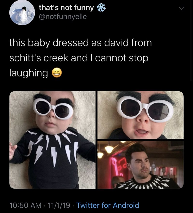 Eyewear - that's not funny @notfunnyelle this baby dressed as david from schitt's creek and I cannot stop laughing A A 10:50 AM 11/1/19 Twitter for Android