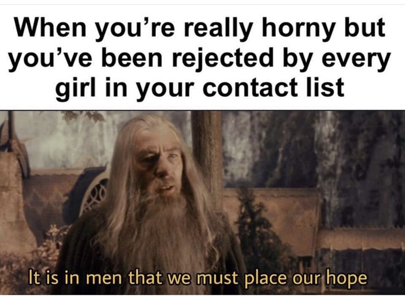 Text - When you're really horny but you've been rejected by every girl in your contact list It is in men that we must place our hope