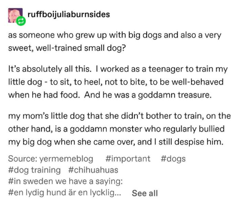 Text - ruffboijuliaburnsides as someone who grew up with big dogs and also a very sweet, well-trained small dog? It's absolutely all this. I worked as a teenager to train my little dog -to sit, to heel, not to bite, to be well-behaved when he had food. And he was a goddamn treasure. my mom's little dog that she didn't bother to train, on the other hand, is a goddamn monster who regularly bullied my big dog when she came over, and I still despise him. Source: yermemeblog #important #dogs #dog tra
