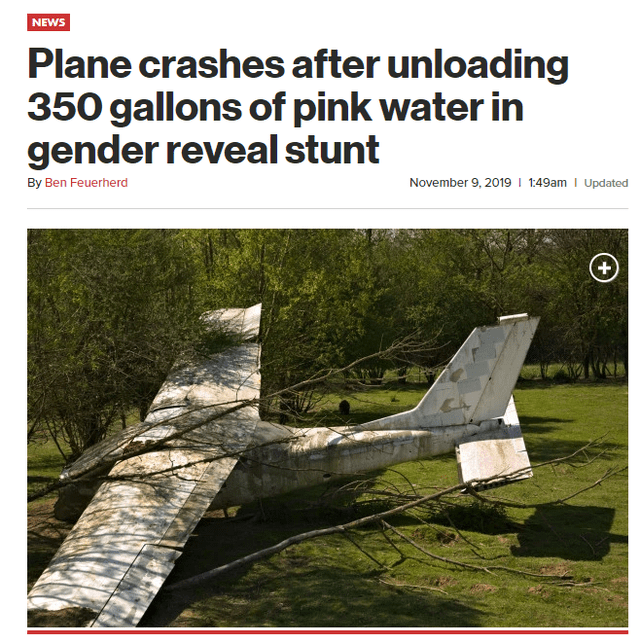 Text - Tree - NEWS Plane crashes after unloading 350 gallons of pink water in gender reveal stunt November 9, 2019 I 1:49am Updated By Ben Feuerherd