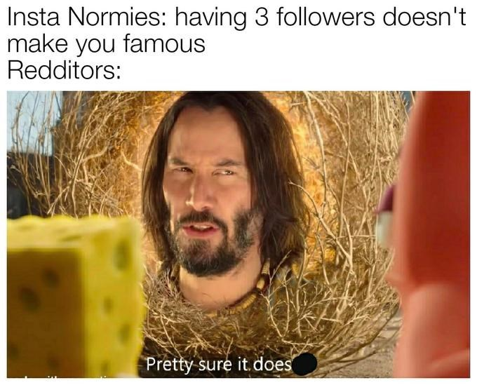 Hair - Insta Normies: having 3 followers doesn't make you famous Redditors: Pretty sure it.does