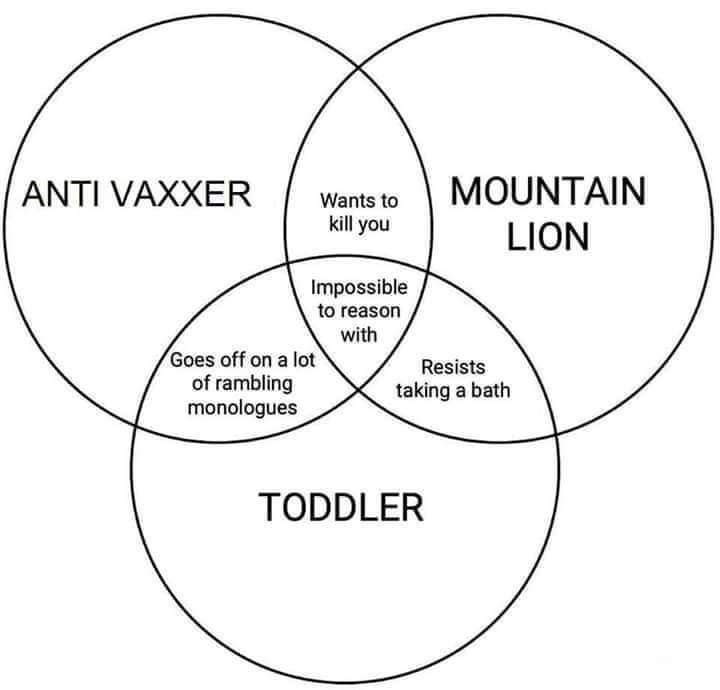 Text - ANTI VAXXER MOUNTAIN Wants to kill you LION Impossible to reason with Goes off on a lot of rambling monologues Resists taking a bath TODDLER
