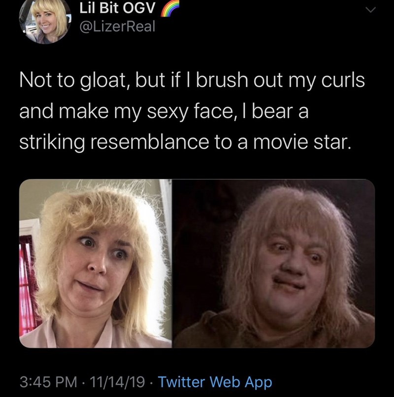 Face - Lil Bit OGV @LizerReal Not to gloat, but if I brush out my curls and make my sexy face, I bear a striking resemblance to a movie star. 3:45 PM 11/14/19 Twitter Web App